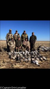 Texas sandhill crane and goose hunts